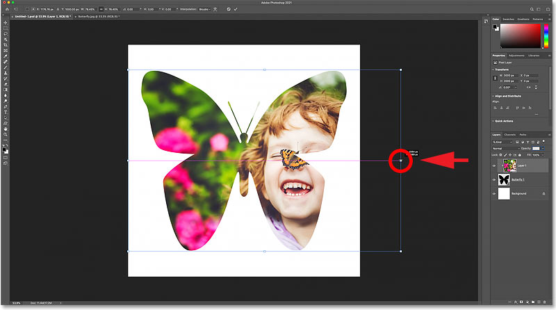 Scaling the image inside the shape using the transform handles