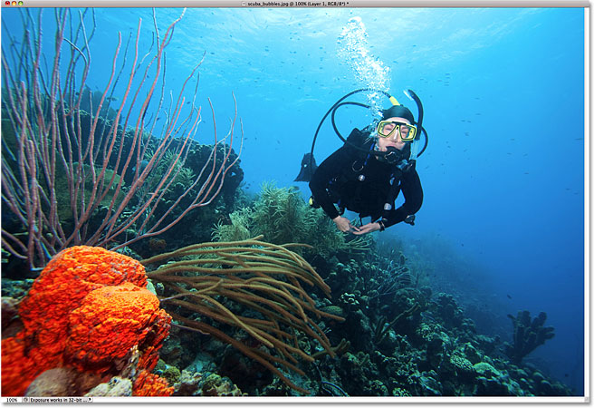 A photo of a scuba diver and coral. Image licensed from iStockphoto by Photoshop Essentials.com.