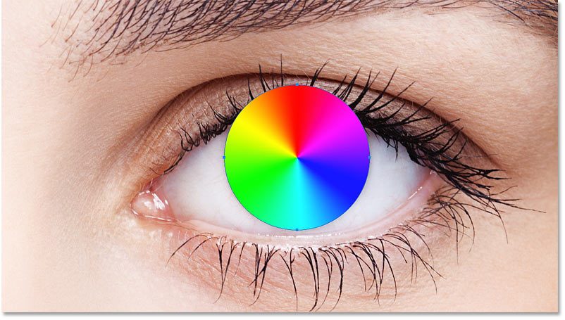 The second shape now covers the iris.