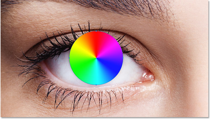 The shape covers the area of the eye we want to colorize.