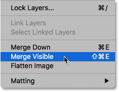 The Merge Visible command in Photoshop.