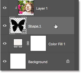 Selecting the Shape layer in the Layers panel.