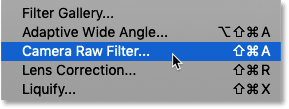 How to select the Camera Raw Filter in Photoshop