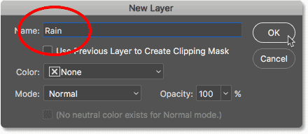 Naming the layer in the New Layer dialog box.