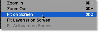 Selecting the Fit on Screen command from the View menu in Photoshop