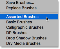 Selecting the Assorted Brushes set.