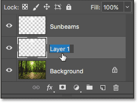 Double-clicking on the name 'Layer 1'.
