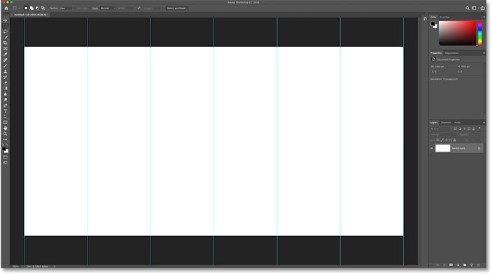 The Photoshop document has been divided into vertical sections using guides.