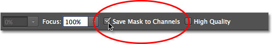 The Save Mask to Channels Option for the Iris Blur filter in the Blur Gallery.