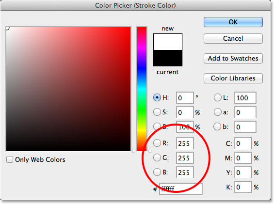 Choosing white for the stroke color in the Color Picker