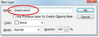Photoshop's New Layer dialog box