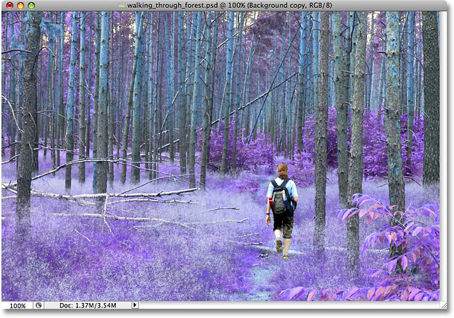 The image after changing the blend mode to Color. Image © 2009 Photoshop Essentials.com.