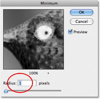 Photoshop Minimum filter dialog box.