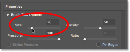 Lowering the brush size in the Liquify filter in Photoshop