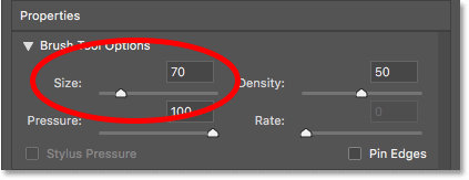 Increasing the Forward Warp Tool brush size to 70 pixels in the Liquify filter in Photoshop