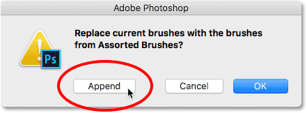Appending the Assorted Brushes set to the default brushes in Photoshop