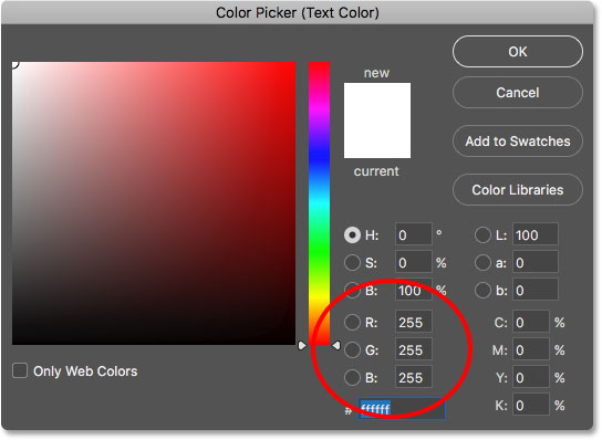 Changing the type color to white in Photoshop's Color Picker