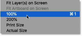Selecting the 100 percent zoom option in Photoshop's View menu
