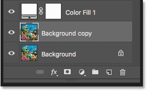 A 'Background copy' layer appears above the original Background layer in the Layers panel